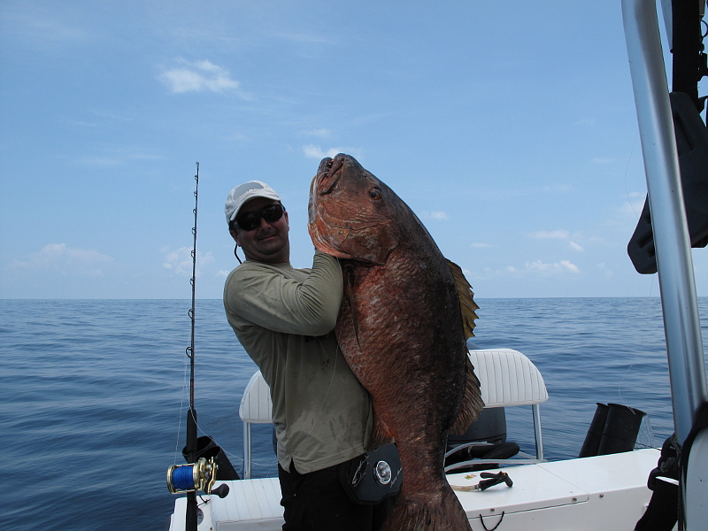 maniac_poppers-cubera_snapper_panama_fishing