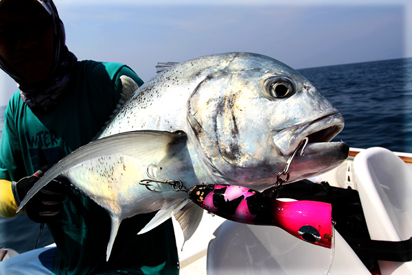 saltwater_popper_fishing_in_thailand