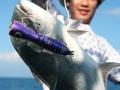 maniac_popper_lure_fishing