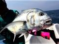 saltwater_popper_fishing_in_thailand