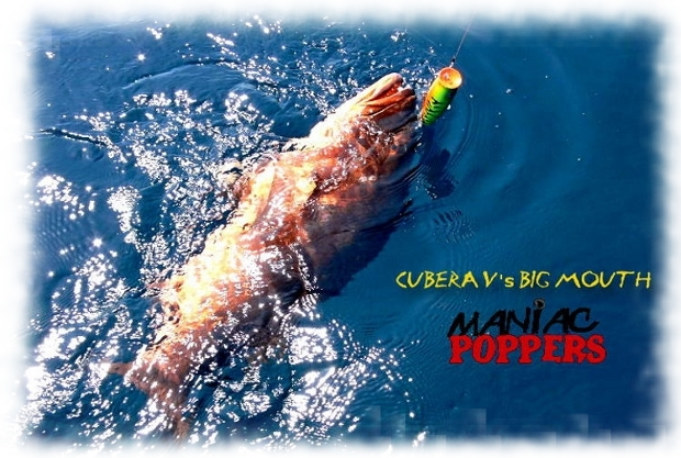 Photo of Cubera Snapper caught popping fishing in Panama using Maniac Big Game Saltwater Popper Lures